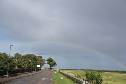 101日で3回虹を見た! (散歩の所)